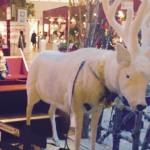 【写真付きレポート】阪急百貨店の北欧クリスマスフェアが素晴らしすぎる