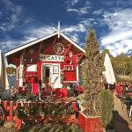 【かもめ食堂プロジェクトVol.1】こんな北欧カフェがあったら素敵すぎる