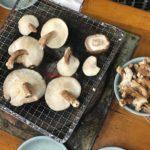 【ひみつの週末北欧ピクニック】北欧的きのこ狩りの会
