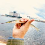 【週末あそび】日本海へ魚釣りに行ってきた