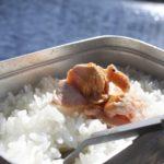 マイフィンランドルーティン 9/100 湖畔でキャンプ飯を作って食べる